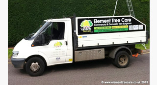 commercial tree surgeons element tree care