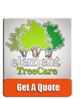 element tree care - leamington tree surgeon